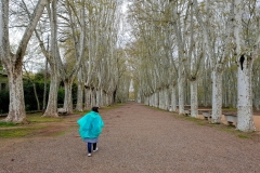 Girona11